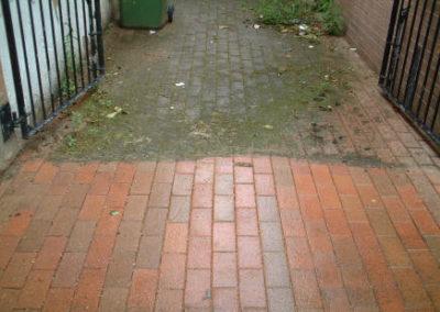 brick_walkway_pressure_wash